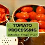 Tomato Processing - Canning Freezing Dehydrating
