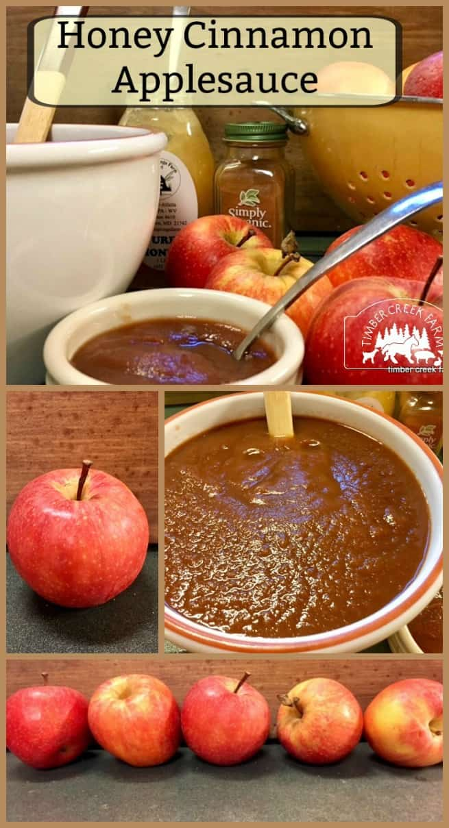 honey cinnamon applesauce