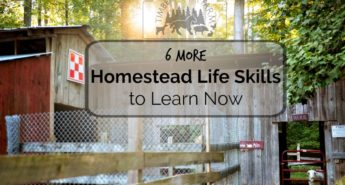 6 More Homestead Life Skills to Learn