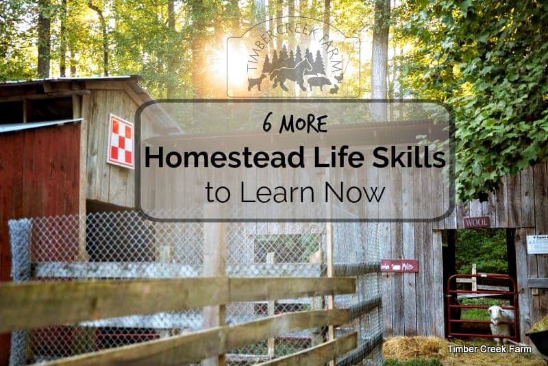 homestead life skills