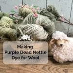 Purple Dead Nettle Dye for Wool