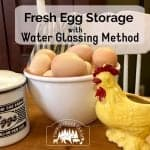 Water Glassing Fresh Egg Storage
