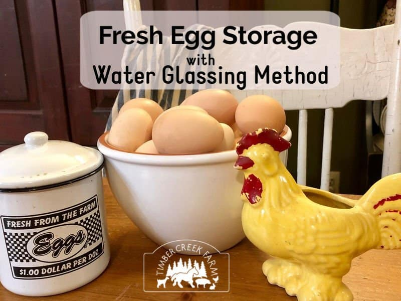 fresh egg storage using the water glass method
