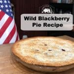Wild BlackBerry Pie Recipe