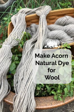 Make Acorn Natural Dye for Wool