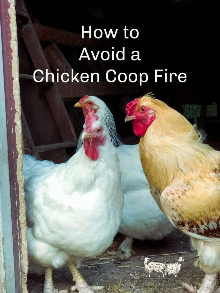 How to Avoid a Chicken Coop Fire