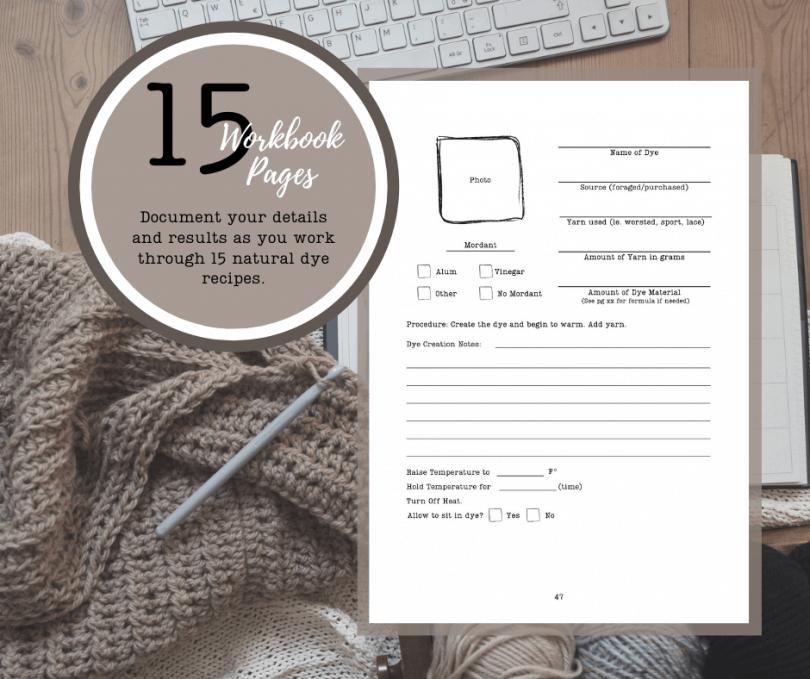 dye workbook template page